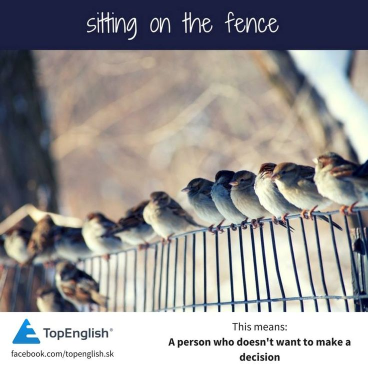 sitting on a fence - english idiom
