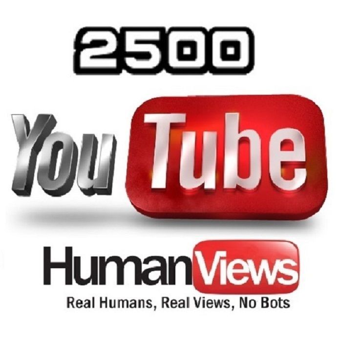 Give you 2500 - 3000 high retention non drip views for your video