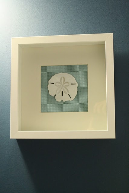 We have a bunch of sand dollars (and other beachy objects) . . . this would be a great thing to do for the bath.