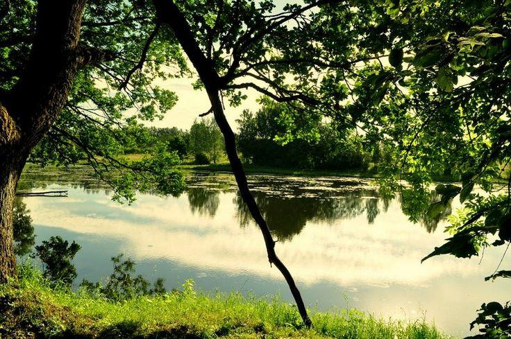 фото: Природа Латвии   фотограф: Oлег Кириков   WWW.PHOTODOM.COM