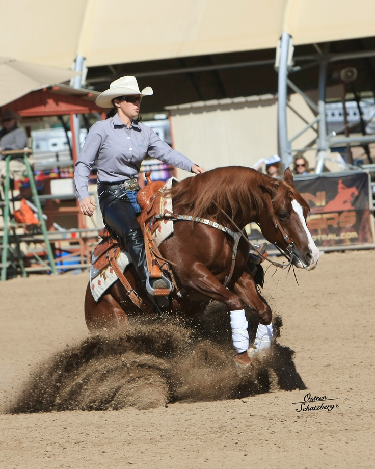 Reining Pictures 113