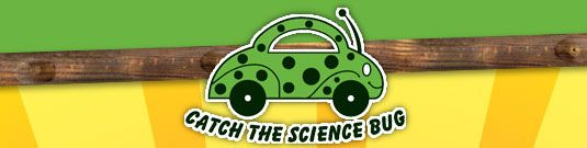 Students can solve science puzzles, do scientific investigations, learn more about what scientists do on the job, and much more.