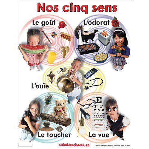 Affichages , cahiers de vocabulaire .....TBI
