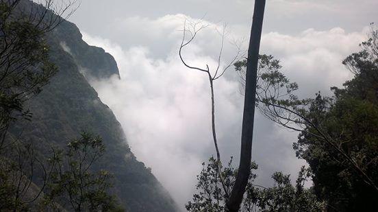 Splendor of #Kodaikanal is Concealed in its Beautiful Valleys