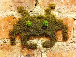 moss graffiti street art space invaders