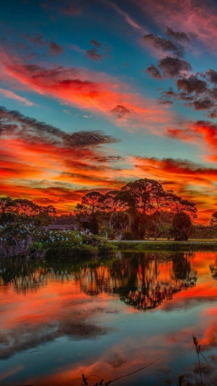 Very Beautiful Nature Photography Forest Sunset Beautiful Nature