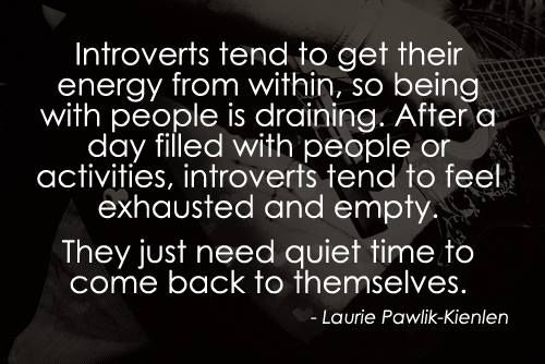 28 Best Introvert Images On Pinterest