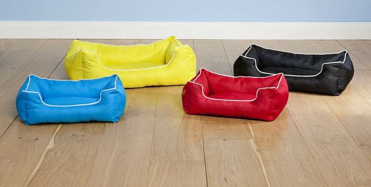 Brightly coloured summer pet beds from The Reject Shop