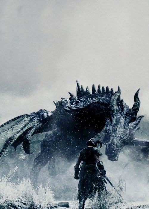 Dovahkiin and Alduin from the live action trailer.