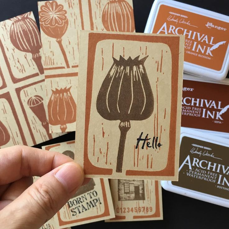 Darkroom Door Carved Pods stamps