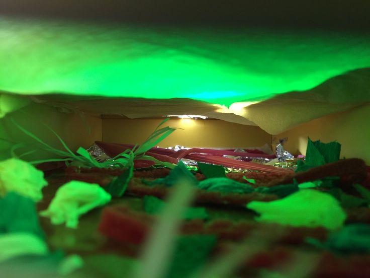 Celebrate-food festival. Green light feel fresh.
