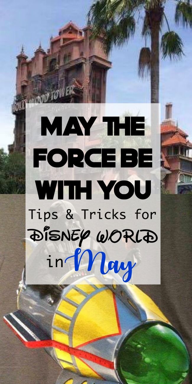 Tips and Tricks to make your Disney World vacation in May awesome! Including what to wear to Disney World in May and a Disney World Crowd Calendar for May!