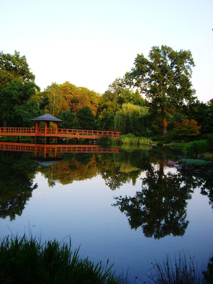 Wrocław - Japanese garden