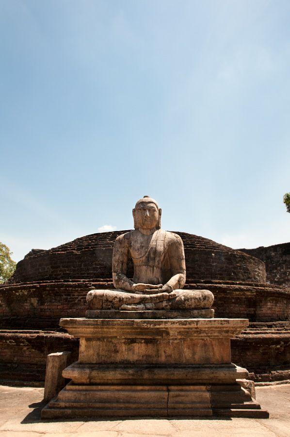 Buddha – MrJane