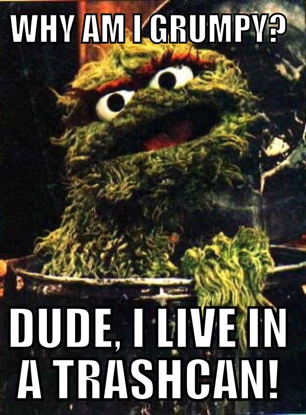 sesame street meme ( Quote is from a Dave Chappelle comedy routine. I changed one word deliberatly)