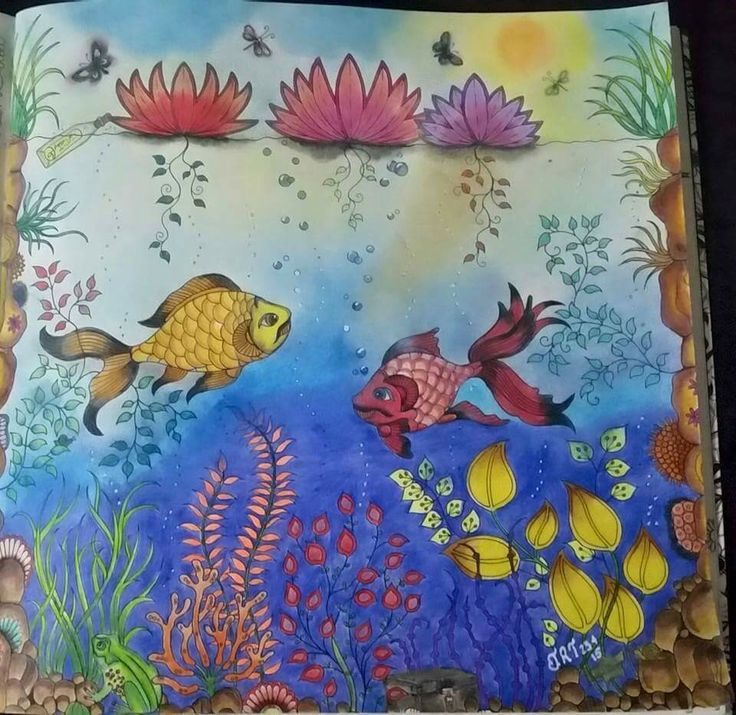 26 Best Images About Fish Secret Garden Peixe Jardim Secreto On Pinterest