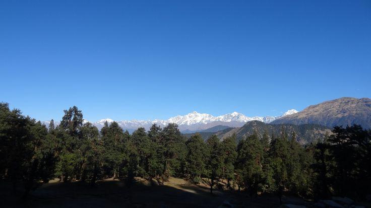 Mesmerizing view while trekking to Tunganath temple from Chopta. (Uttarakhand)