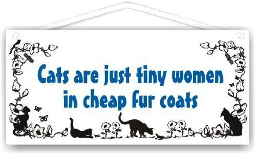 Cats are just tiny women in cheap fur coats