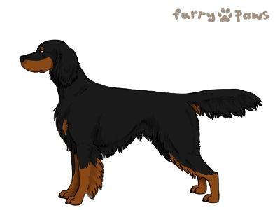 Furry Paws // WCFT Kip's Final Countdown [lla 2STM 12HH 1.288] 10.0 *BoB*'s Kennel