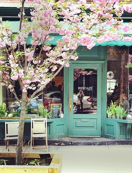Curing my hangover at this adorable coffee shop  this morning...