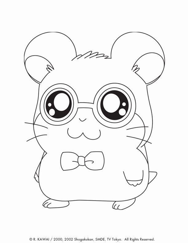 Cute Animals Coloring Book Fresh Hamtaro Cute Animals Coloring Pages Hamsters Fofos Desenhos Pra Colorir Desenhos Faceis