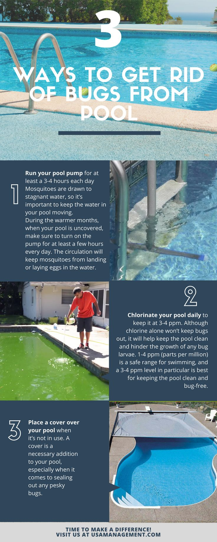 how to get rid of geese in your pool