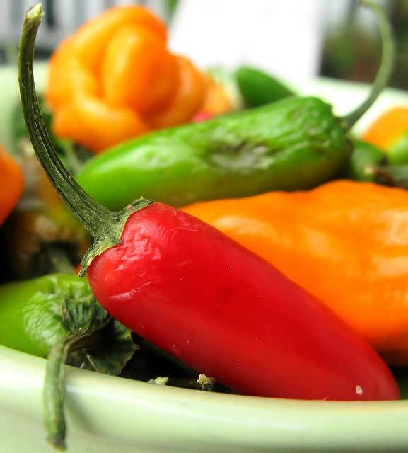 Oh, a spoon full of peppers helps the medicine go down...Sauces Recipe, Food Matter, Watches Recipe, Eating