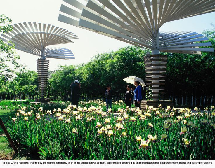 Name of project qinhuangdao botanic garden landscape as for Red landscape architects