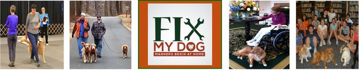 Dog Training Madison NJ - NJ Fix My Dog https://www.njdogandpuppytraining.com/dog-training-method/