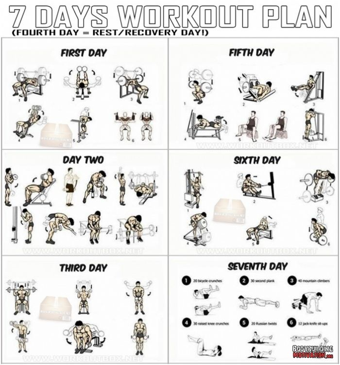Free Weights Total Body Workout: 7 Days Workout Plan