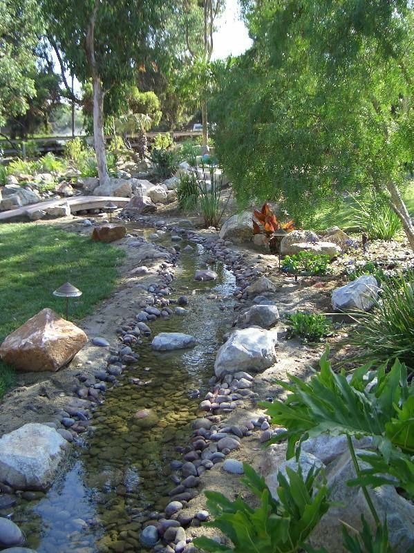 Pin by Barbara Stonicher on Backyard in 2020 (With images ...