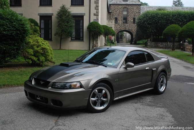 17 best images about mustang styling on pinterest mustang boss 2013 shelby gt500 and shelby gt500. Black Bedroom Furniture Sets. Home Design Ideas