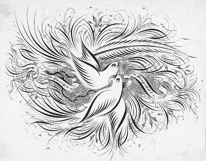 Ornamental Calligraphy Penmanship Ornamental Calligraphy