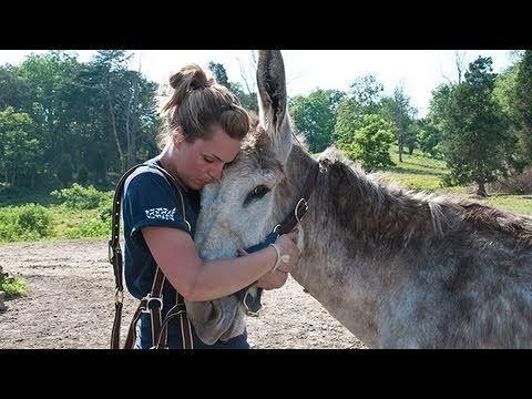 West Virginia Rescued Equines Forever Grateful