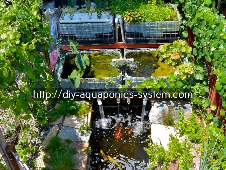 aquaponics equipment for sale - diy mini hydroponic system.open source aquaponics 7551409940