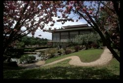 Japanese Gardens  From 22 March to 25 May, the gardens of Rome's Japanese Cultural Institute are open to the public on Friday afternoons from 15.00-17.00, and on Saturday mornings from 10.00-12.00.