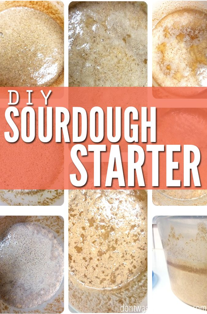 Ever wonder how to make your own sourdough starter, so you can have that famous San Franciscan bread? This DIY tutorial walks you through, step by step, on how to create your own sourdough starter!
