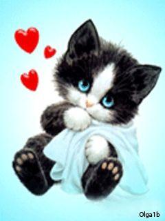 """""""O gato não pede amor. Nem depende dele. Mas, quando o sente, é capaz de amar muito."""