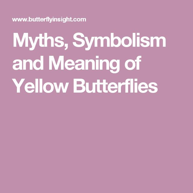 Myths, Symbolism and Meaning of Yellow Butterflies