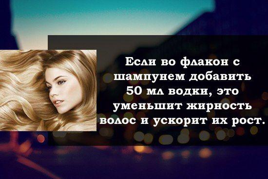 http://img.meta.kz/9378/9378035.jpg