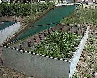 Les grandes lignes de l'élevage d'escargots pour amateurs. Photo : petit parc pour élevage personnel.