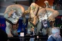 Image result for weta cave