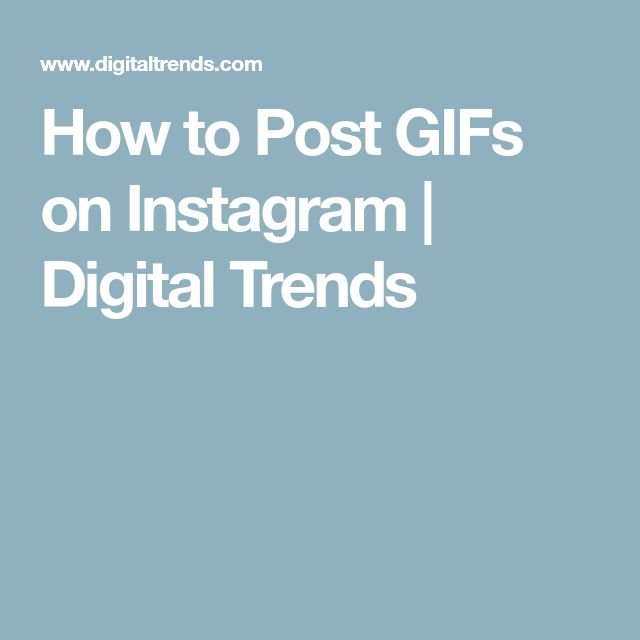 How to Post GIFs on Instagram | Digital Trends