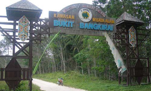 wisata balikpapan - Bukit Bangkirai km.38