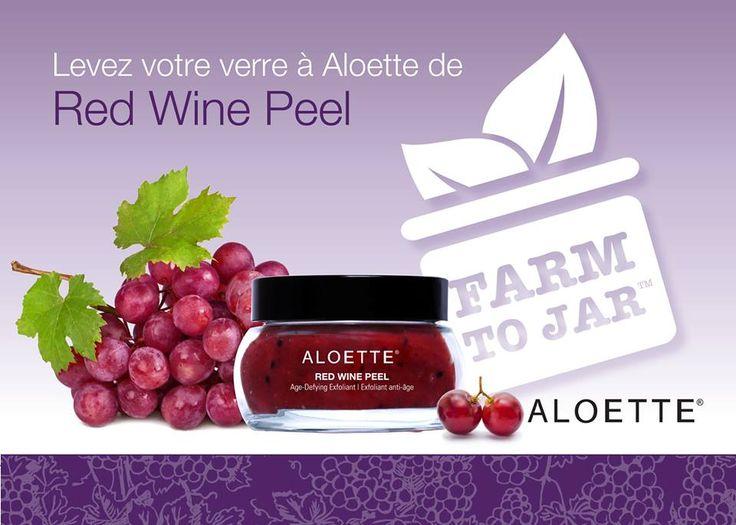 Un exfoliant au vin rouge!!! MMMMM quoi de plus amusant!!!   #aloetteholiday