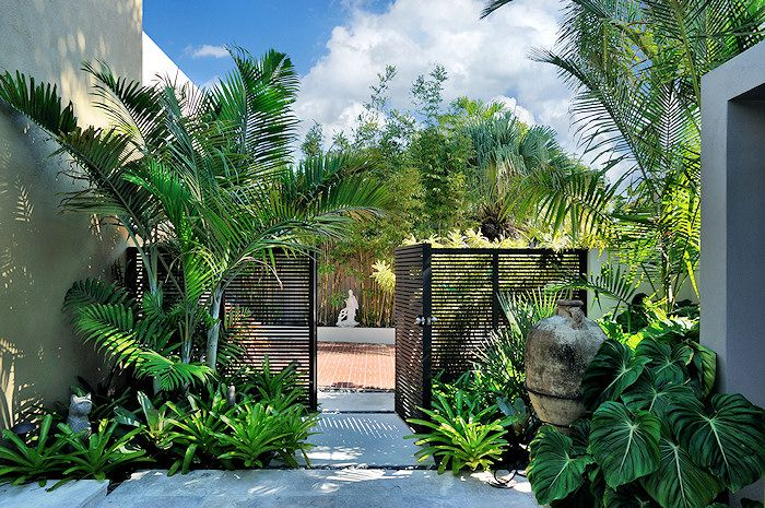 modern architecture - craig reynolds landscape architect - ekhoff-blum residence - exterior view - tropical garden