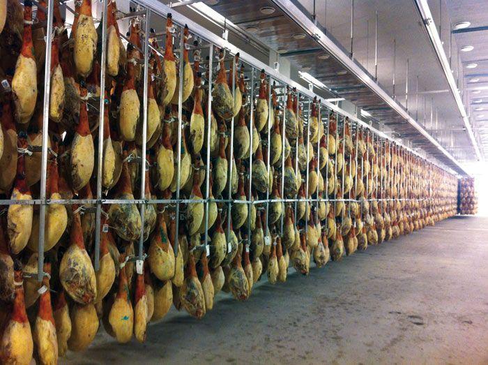 Existen muchos tipos de jamones, al igual que también existen diferentes tipos de cerdos.  Los jamones El Madero proceden de cerdos ibéricos alimentados con bellota por lo que el resultado final es de mayor calidad.  Descúbrelos!!! Venta directa en tienda La Muela Tel. 956 44 84 45 www.carnicaselalcazar.com #carnicaselalcazar #carnederetintocertificada