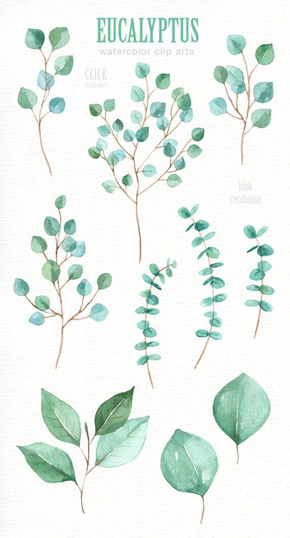 Eucalyptus Leaf Watercolor clipart, Watercolor flower, Watercolour Leaves, Leaf clipart, Wedding Clip Art, wedding invitation, wreath, green