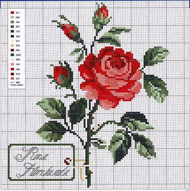 "Фото, автор sum.lara на Яндекс.Фотках [ ""DMC Punto сroce.La grande biblioteca delle idee Fantasie di Fiore"", ""Gallery.ru / Photo # 48 - nostra - ergoxeiro"", ""sum-lara — на Яндекс.Фотках"", ""Red Rose Cross Stitch."", ""Gallery.ru / Foto # -"", ""���� - - Vikenzia"", ""���� - 7 - kento"", ""une jolie rose"", ""Pretty rose"" ] #<br/> # #Cross #Stitch #Rose #Flowers,<br/> # #Rose #Cross,<br/> # #Cross #Stitch #️flowers #️,<br/> # #Cross #Stitching,<br/> # #Stitch #5,<br/> # #Crosstitch #Roses,"