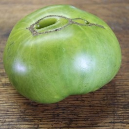 10 Best Green Tomato Varieties Images On Pinterest